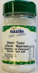 NAZILE ZEE ZOUT 10X400 GR PET